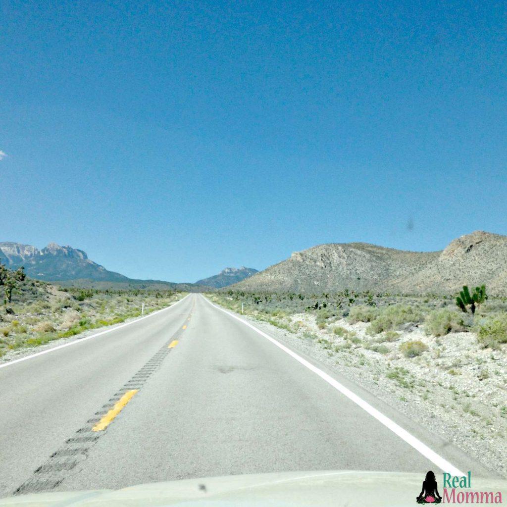 The drive to Mt Charleston