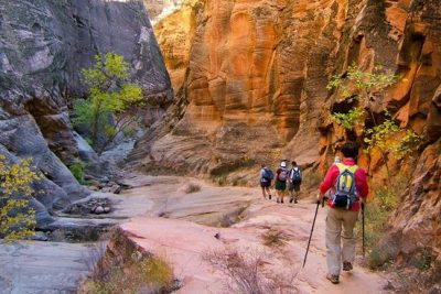 5 Great Places in America for Family Hikes