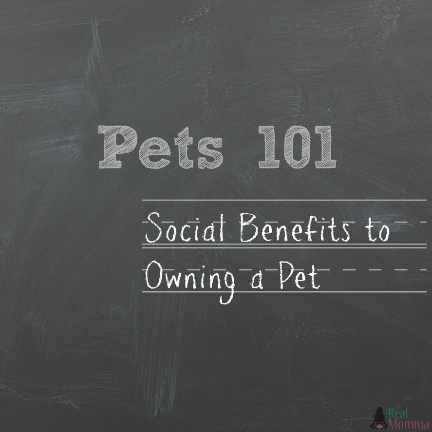 social benefits to owning a pet
