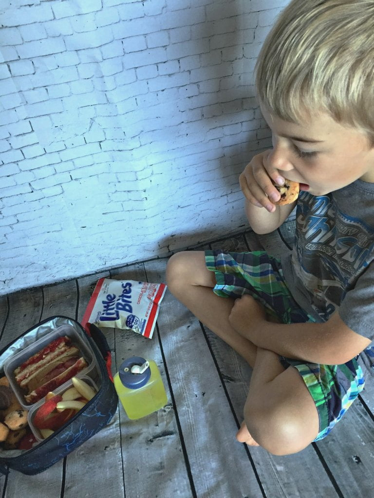 It is that time of year again when summer comes to an end and the kids go back to school. I miss the fun times we've had over these past two months and then I begin to wonder how I'm going to pack lunches five times a week, for the rest of the school year. What is a parent to do? Balancing good nutrition in the lunch box, busy schedules with a fun and sensible snack is going to be my biggest challenge.