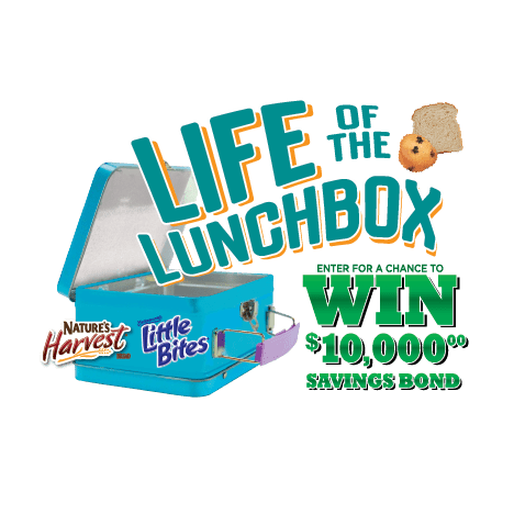 Life of the Lunchbox