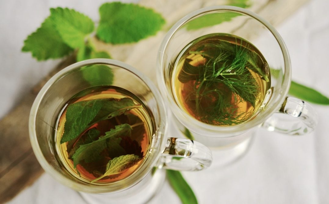 herbal tea herbs tee mint 159203 2