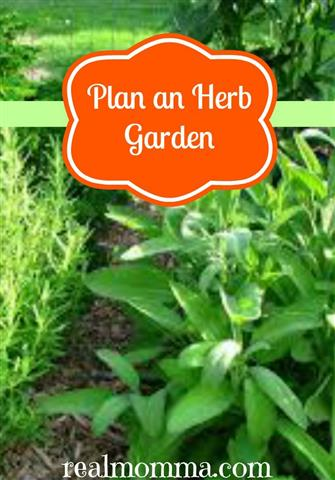 Plan Your Herb Garden