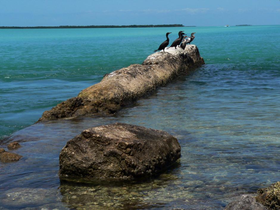 Orlando Scenic Beaches