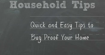 Quick and Easy Tips to Bug Proof Your Home