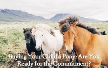 Buying Your Child a Pony: Are You Ready for the Commitment?