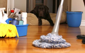 Six Household Products with the Most Harmful Chemicals in Them