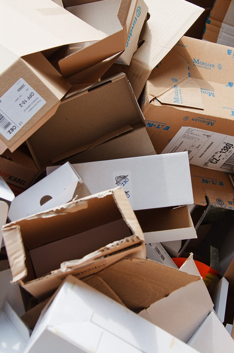 6 Survival Tips for Your Family's Move