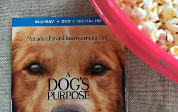 A Dog's Purpose Movie Review