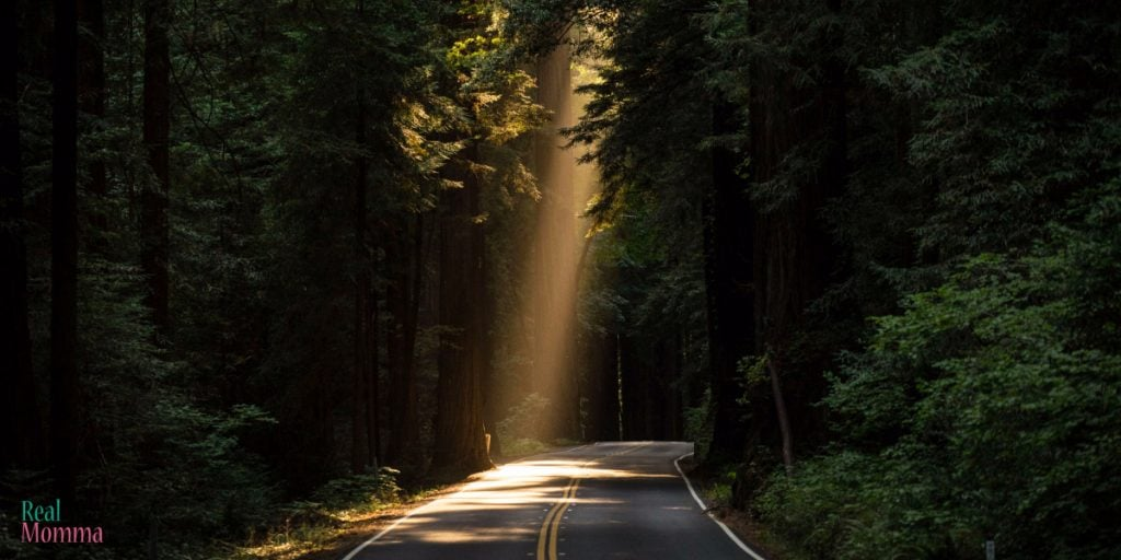 3 Tips for a Perfect Summer Road Trip