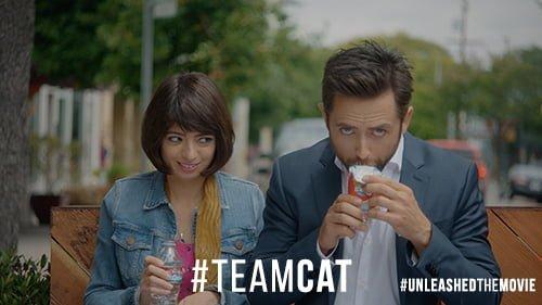 TeamCat V1