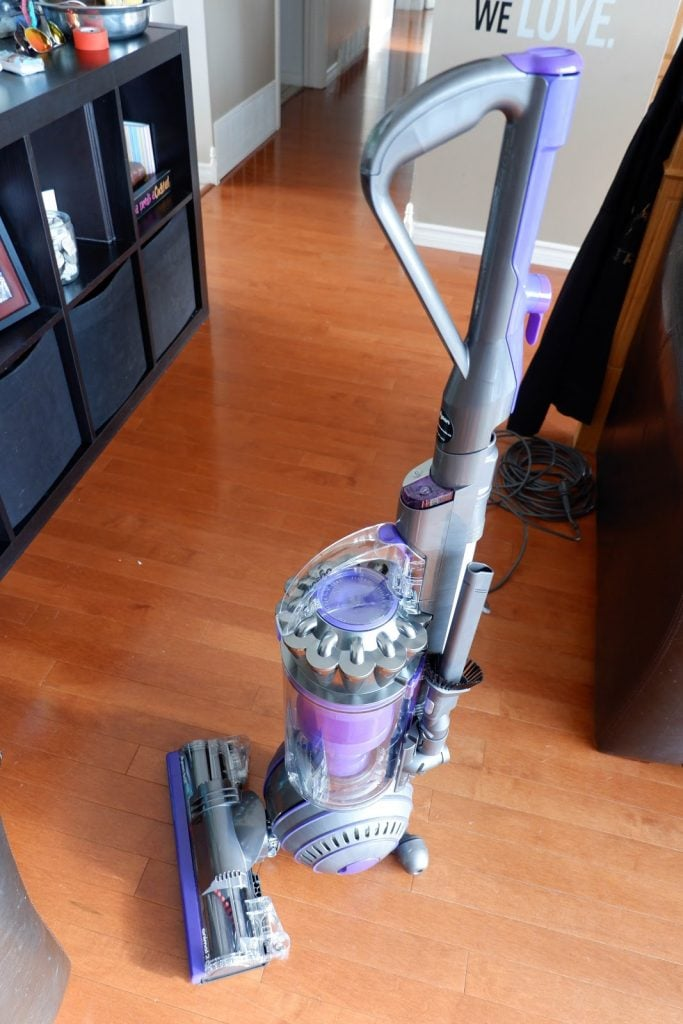 Bring Life Back to Your Carpets with the Dyson Ball Animal 2