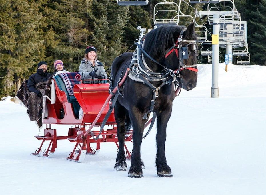 Whistler 2019 sleigh ride Christmas