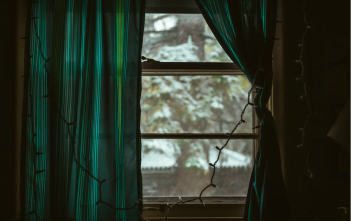 A window looking out to a winter scene.